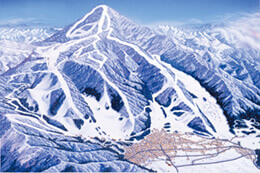 Nozawa Onsen Ski Resort provides a huge variety of runs for many levels.